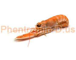 Chitosan, which is derived from the exoskeletons of shrimp and other crustaceans, is a gentle fat blocking weight loss supplement.
