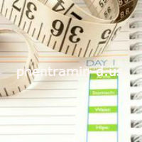 How Long Should You Take Phentramin-D to Lose Weight?