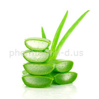 aloe drinks to lose weight
